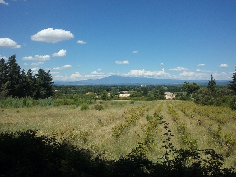 RESIDENCES CANTE PERDRIX - Tranche 2